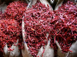 Chilies for sale in giant sacks in the New Delhi spice market